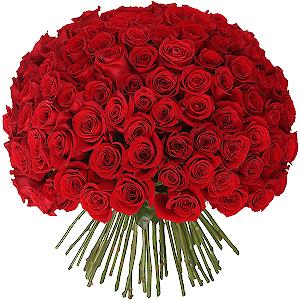 Цветы на 14 февраля - Букет из 101 красной розы
