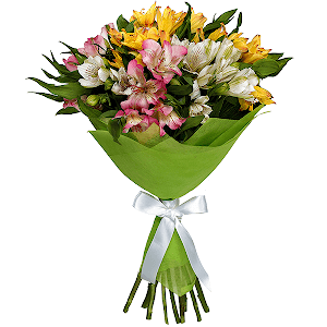 цветы ко дню матери Весеннее солнце