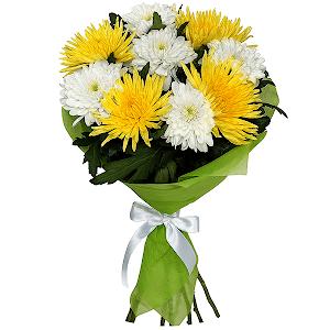 Хризантема одиночная (9 шт.)